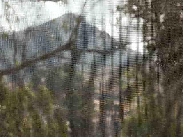 Vista desde mi ventana